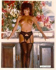 Original 1990s Nude Large (8 x 10) Photo- Stockings- Garter- Karen Brennon