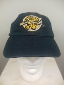 47 Brand Minor League Charleston Riverdogs Baseball Hat Size Small. Free Ship