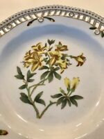 Chelsea House Porcelain Botanical Plate Yellow Azalea  Flowers