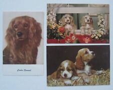 THREE Cocker Spaniel Dog Postcards - 3