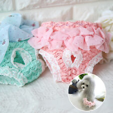 Pet Cat Underwear Chiffon Diaper Dog Sanitary Pants Clothes Lace Home Puppy S-L