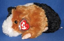 TY CLASSIC PLUSH - PATCHES the GUINEA PIG – MINT wtih MINT TAGS