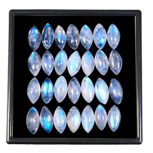 28 Pcs Natural Blue Moonstone 14mm 7mm Marquise Exclusive Quality Gemstones Lot