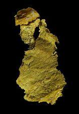 26.00 mm RARE CRYSTAL LEAF GOLD GEORGETOWN QLD AUSTRALIA 6