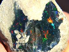 87.1 ct New Found Natural Black Opal Rough, Ethiopia! Opal259
