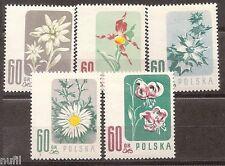 Polska POLONIA Poland yv # 904/908 ** MNH Flores / flowers