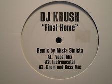 "DJ KRUSH - FINAL HOME / ZEN APPROACH (REMIXES) (12"")  2004  RARE  BLACK THOUGHT"