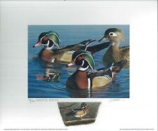CALIFORNIA #29 1999 STATE DUCK PRINT Robert Steiner, Color Remarque #75/250
