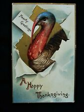 Signed Clapsaddle Turkey Bursts Through Paper Emboss Thanksgiving Postcard ~