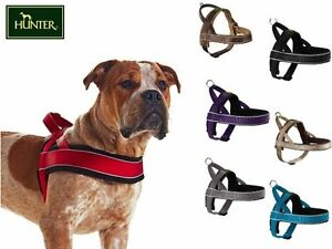 HUNTER NORWEGIAN HARNESS, VARIOUS SIZES & COLOURS , PADDED & STRONG