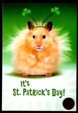 St. Patrick's Day Hamster Clovers Glittered - St. Patrick's Day Greeting Card