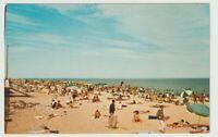 Unused Postcard Greetings from Rehoboth Beach Delaware DE Sunbathers Ocean
