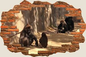 3D Hole in Wall Apes Playing View Wall Stickers Film Mural Art Decal 193