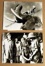 SABU * ELEFANTENBOY - 2 TV-PRESSEFOTOS 24x18cm -1975