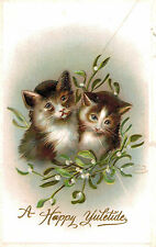 Vintage Cat Postcard,2 Kittens,Mistletoe,Happy Yuletide,Embossed,c.1909