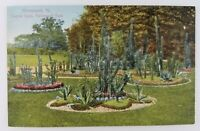 Postcard Cactus Beds Fairmount Park Philadelphia Pennsylvania