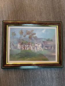 Country Cricket By Blackdoor, Jamaican Artist . Signed And Framed.