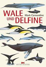 Wale und Delfine von Mark Carwardine Bestimmungsbuch Whale watching