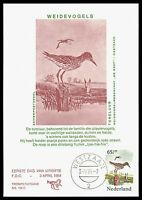 NIEDERLANDE MK 1984 FAUNA VÖGEL BIRDS MAXIMUMKARTE CARTE MAXIMUM CARD MC CM bv87
