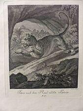 RIDINGER caccia Leonessa rapina ORIGINALE RAME chiave Ebner Augusta 1825