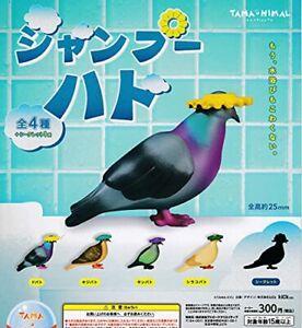 Tama-Nimal Shampoing Pigeon X Toutes 5P Ensemble Gachagacha Gacha Jouet Figurine