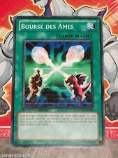Carte YU GI OH BOURSE DES AMES GLD4-FR035 x 2