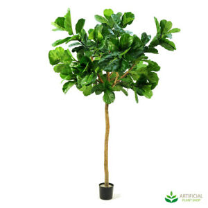 Artificial Fake Plants Giant Fiddle Leaf Tree 3.2m