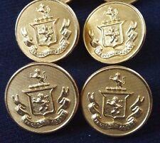 8 Vintage Gold Color Metal Lion Crest Uniform Buttons Waterbury Co. Conn.