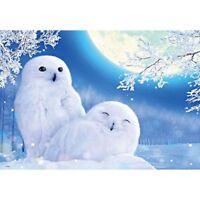 5D Diy Diamond Painting winter owl Cross Stitch diamond Mosaic Kits Home De N4C5