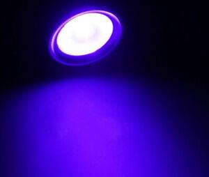3W 395nM UV Orange White Warm White Light Flexible LED Table USB Clip Lamp
