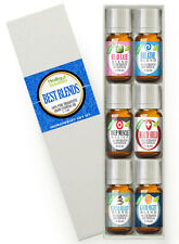 Healing Solutions Best Blends Set of 6 Therapeutic Grade Essential Oil SHIP FREE