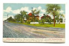 Galveston, Texas - Broadway Palm Scene, road, houses - early postcard