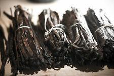 Extrait aromatique Vanille 10 ml