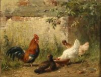 LMOP281 hand-painted rooster hen in country landscape art OIL PAINTING CANVAS