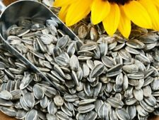 Sunflower Seeds READY TO EAT shine skin surajmukhi Premium Quality - 1 kg