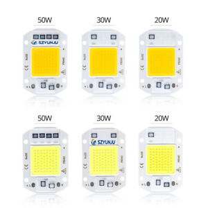 COB LED Lamp Chip 50W 30W 20W 110V 220V DIY LED Bulb Flood Light Diode Spotlight