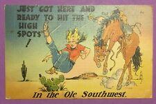 Vintage Antique Post Card, Southwest, Horse, Woman, Humor