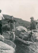 NORVÈGE c. 1940 - Descente des Sacs à  Dos Attelage Cheval Jotunheim - P 1709