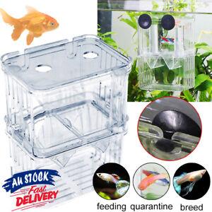 Fish Breeding Box Incubator for Tank Isolation Aquarium Multifunctional