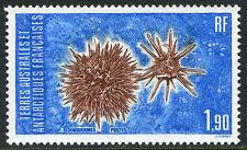 FSAT TAAF 120, MNH. Echinoderms, 1986
