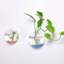 Mkono 2Pack Wall Hanging Plant Terrarium Glass Planter, Oblate Shape