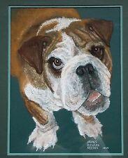 English Bulldog Pastel Portrait Painting Bull Dog Framed Original Artwork Signed