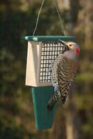 SUET BIRD FEEDER with TAIL PROP, Holds Standard Size Suet & Seed Cakes       /dm