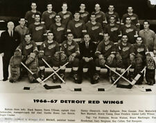 1966-67 Detroit Red Wings Team Photo Vintage Hockey Gordie Howe Delvecchio GREAT