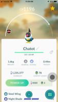 Pokemon Go Trade Chatot Regional ( 24 hr delivery ) - Teleport to you