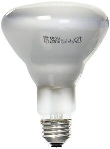 Sylvania 15165 65 Watt Medium Base- Incandescent Light Bulb - 6/pack