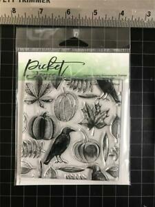 New Picket Fence Studio clear rubber stamp  AUTUMN HARVEST FALL BACKGROUND