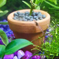 Ceramic Pot Aquarium Betta Shrimp Fish Tank Anubias Plant