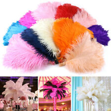 5/10/25pcs Wholesale Natural Ostrich Feathers 8-18inch Wedding Party Centerpiece