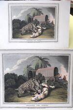 AQUATINT,1813,Orme,England,SHOOTING The HYENA